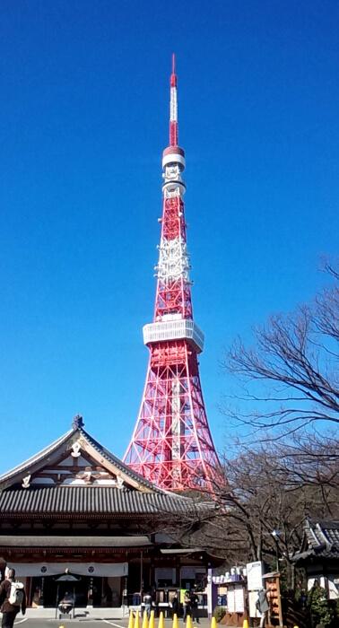 東京都港区の東京タワー